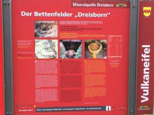 Die Infotafel zeigt Bilder vom Quelltopf des Dreisborn bei Bettenfeld, Foto: natur- und Geopark Vulkaneifel